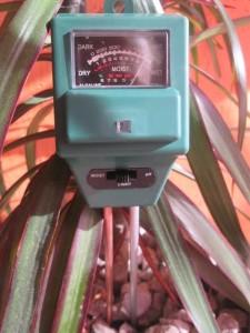 meranie osvetlenia izbových rastlín